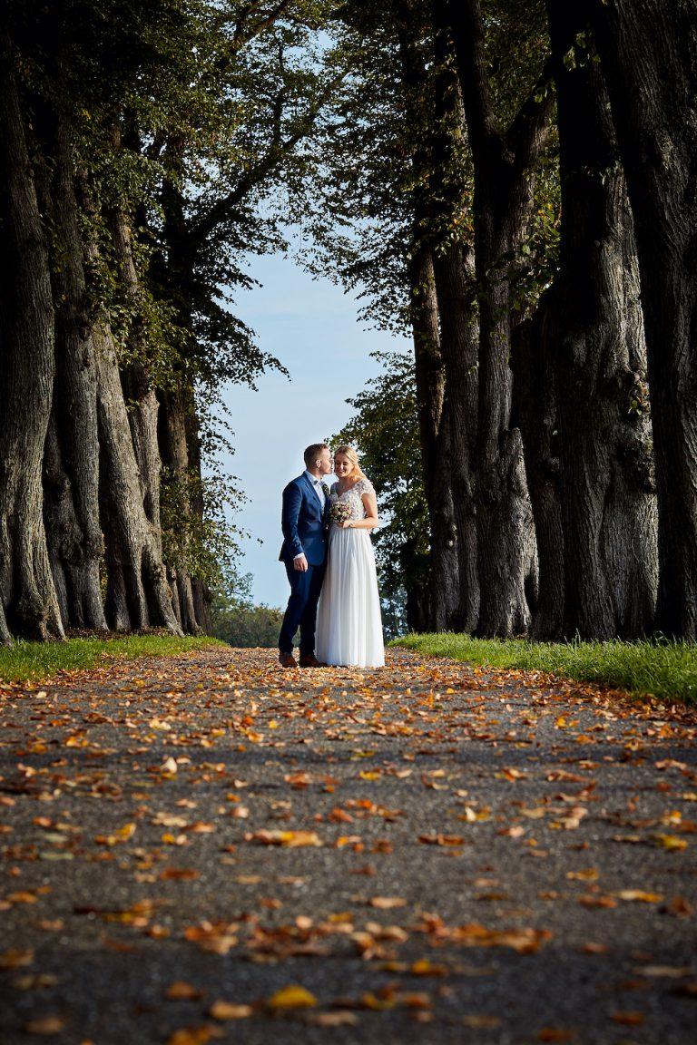 Brautpaarshooting in schöner Allee